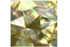MOTHER OF PEARL GOLD LIP CRAZY CUT SURFACE