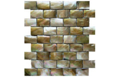 MOTHER OF PEARL MOSAIC CARVING B25 BROWN LIP