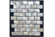 MOTHER OF PEARL MOSAIC CARVING B25 WHITE LIP