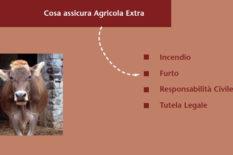 Assicurazione multigaranzia Agricola Extra