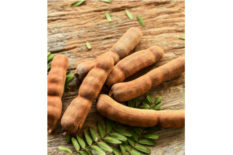 Tamarind (Fruit and Ingredient)