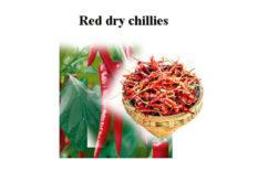Sri Lankan Dry Red CHILLIES