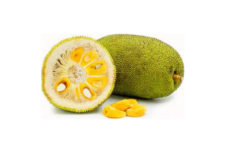 Sri Lakan Jackfruit